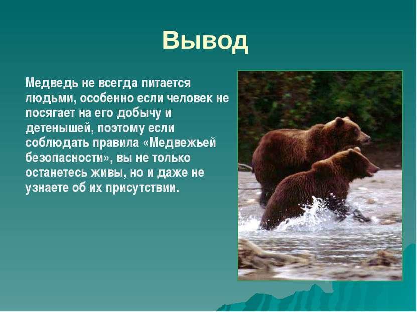Вывод Медведь не всегда питается людьми, особенно если человек не посягает на...