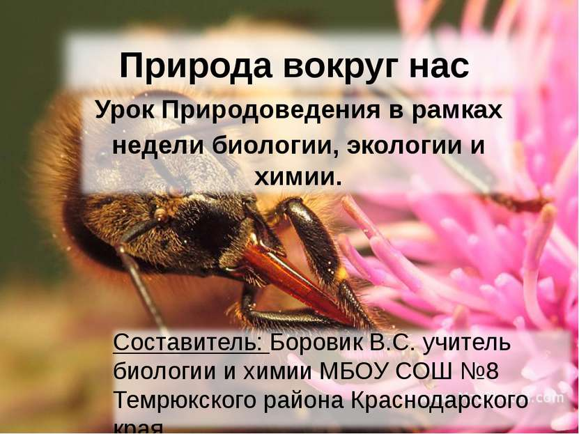 Природа вокруг нас Урок Природоведения в рамках недели биологии, экологии и х...