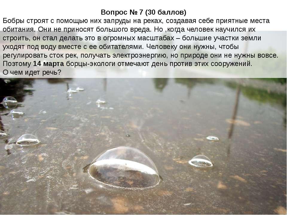 Вопрос № 7 (30 баллов) Бобры строят с помощью них запруды на реках, создавая ...