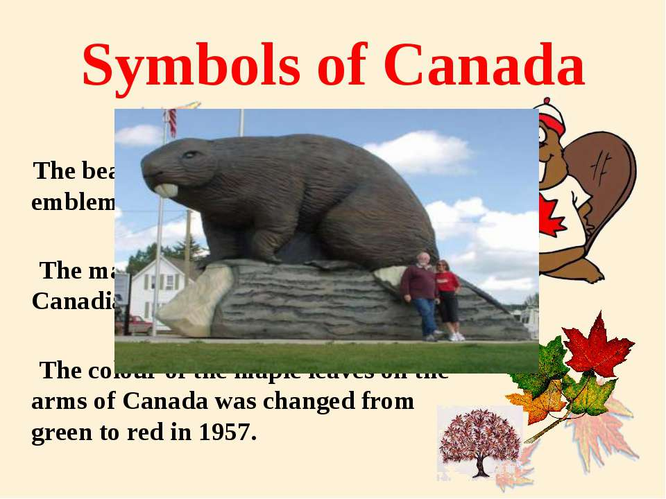 Symbols of Canada The beaver attained official status as an emblem of Canada ...