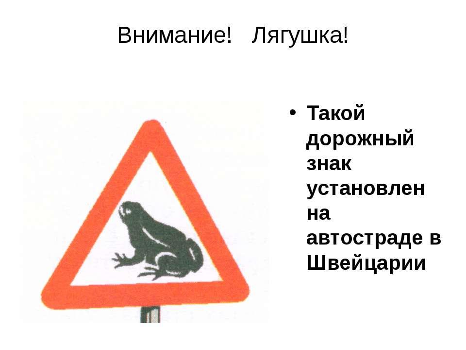Такой дорожный знак установлен на автостраде в Швейцарии Внимание! Лягушка!