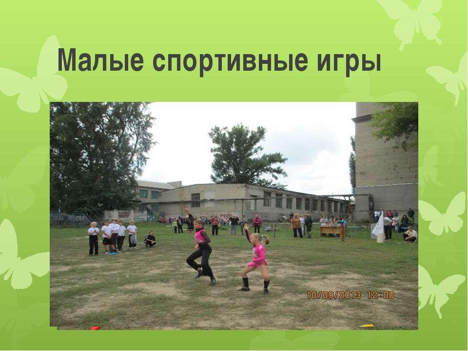 Малые спортивные игры