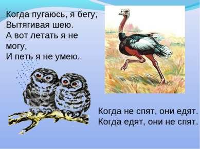 Когда пугаюсь, я бегу, Вытягивая шею. А вот летать я не могу, И петь я не уме...