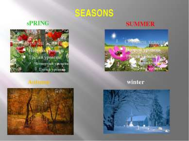SEASONS sPRING SUMMER Autumn winter