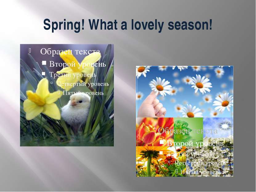 Spring! What a lovely season!