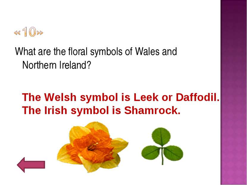What are the floral symbols of Wales and Northern Ireland? The Welsh symbol i...