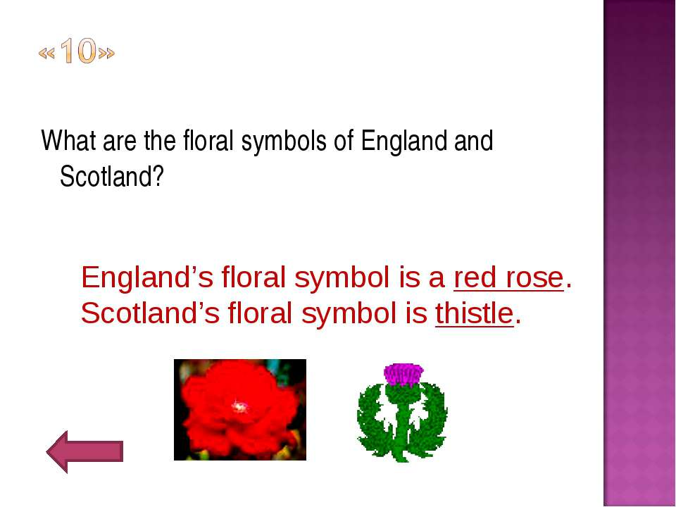 What are the floral symbols of England and Scotland? England's floral symbol ...