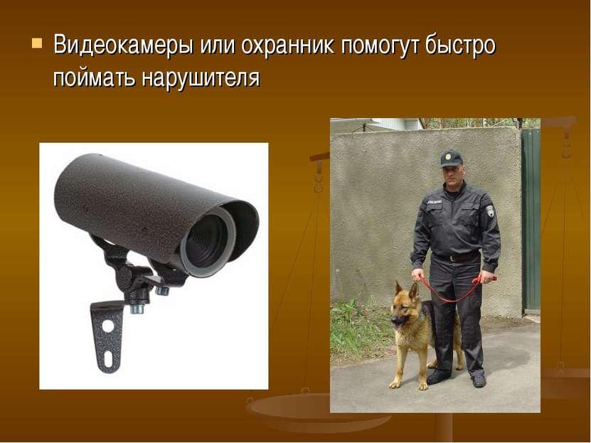 Видеокамеры или охранник помогут быстро поймать нарушителя