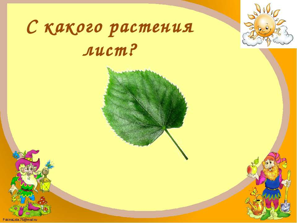 Липа FokinaLida.75@mail.ru