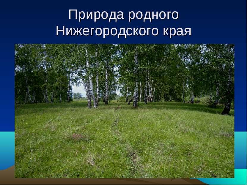 Природа родного Нижегородского края