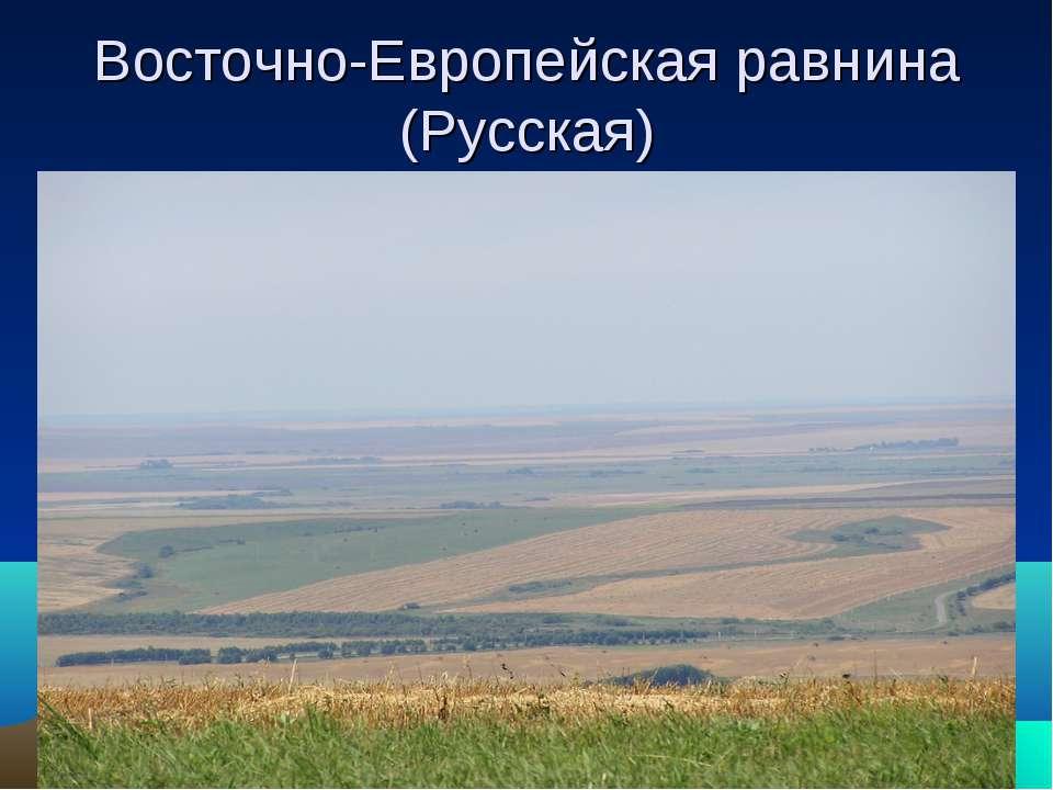 Восточно-Европейская равнина (Русская)