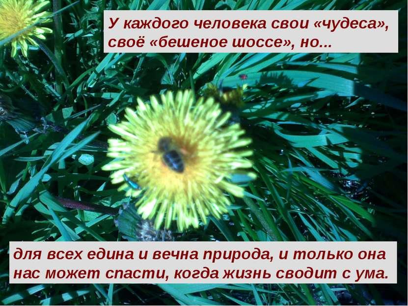 У каждого человека свои «чудеса», своё «бешеное шоссе», но... для всех едина ...