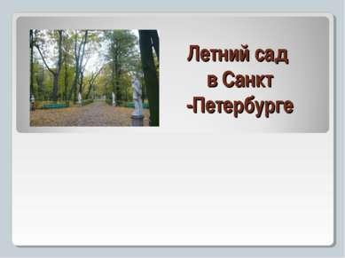 Летний сад в Санкт -Петербурге