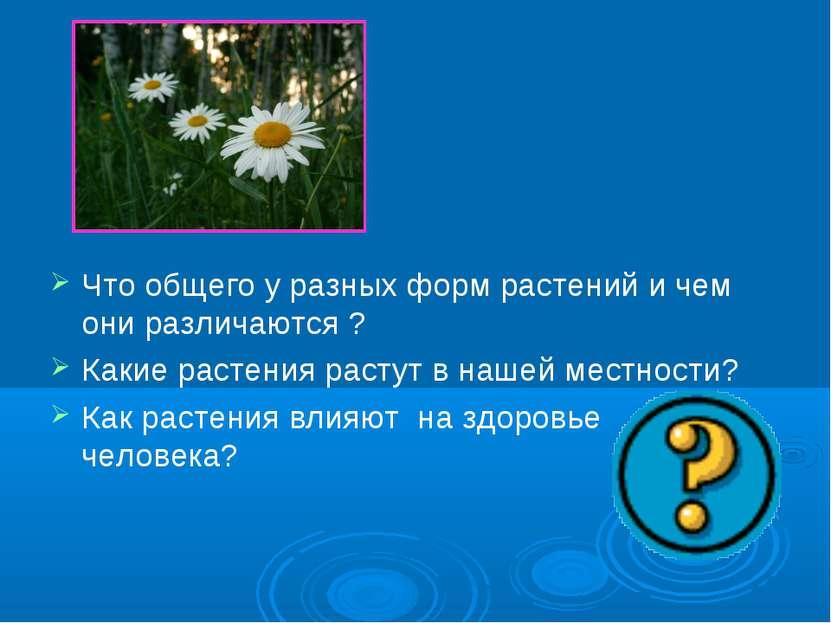 Что общего у разных форм растений и чем они различаются ? Какие растения раст...