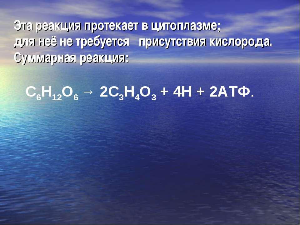 Эта реакция протекает в цитоплазме; для неё не требуется присутствия кислород...